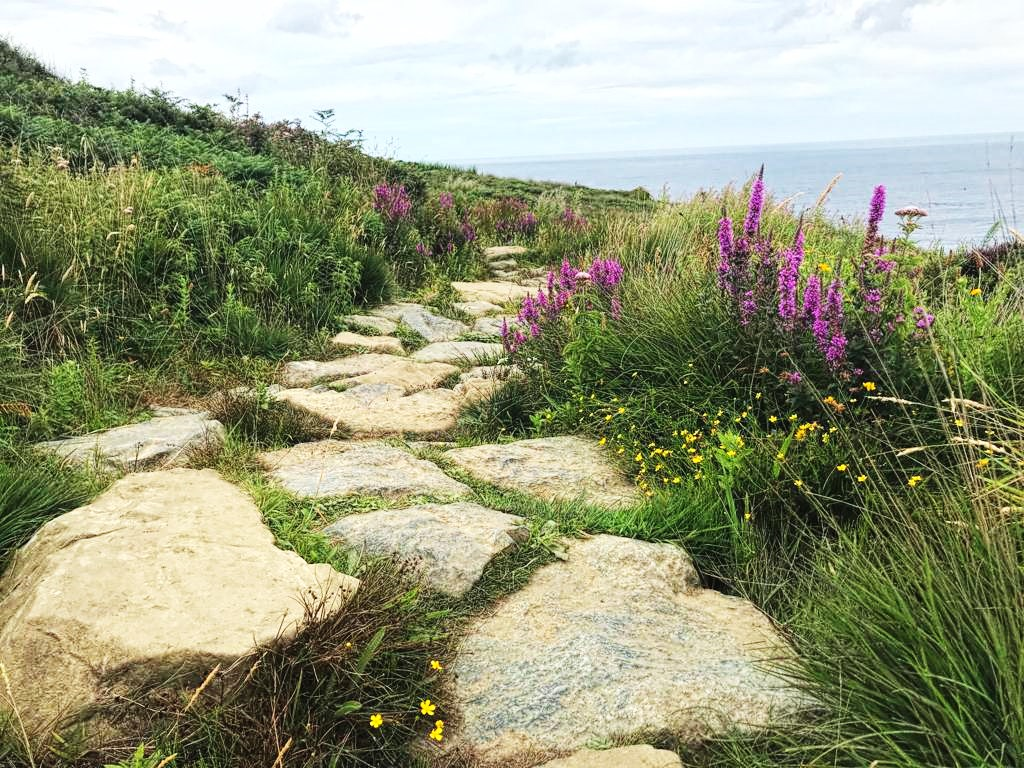 Coastal Hike To Zennor